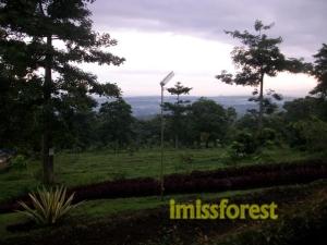 Pemandangan di pagi hari dari perkemahan. Dokumentasi pribadi, taken by Canon PowerShot A2300