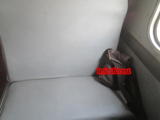 Tempat duduk kereta ekonomi Kalijaga (dokumentasi pribadi, taken by Canon PowerShot A2300)