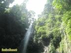 Pesona Curug Lawe, Air Terjun di dalam Hutan