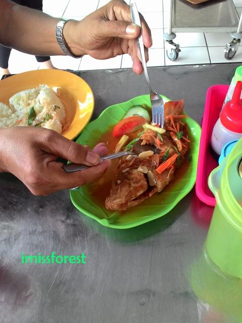 Nila masak korokeling