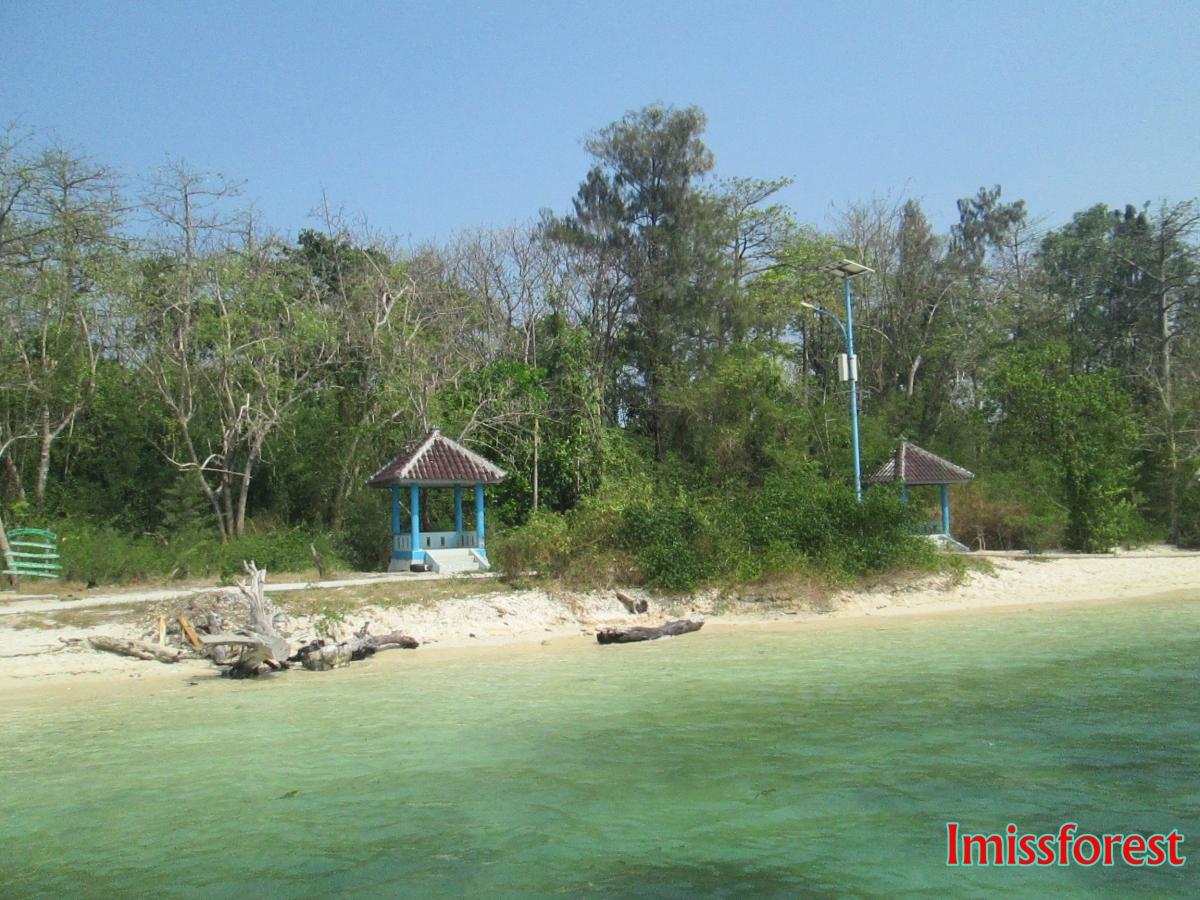 Sepanjang Jalan Kenangan di PulauPanjang